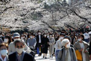 Cảnh tượng người dân Tokyo đổ xô ngắm hoa anh đào khiến chính phủ Nhật Bản quan ngại dịch Covid-19 tái bùng phát?