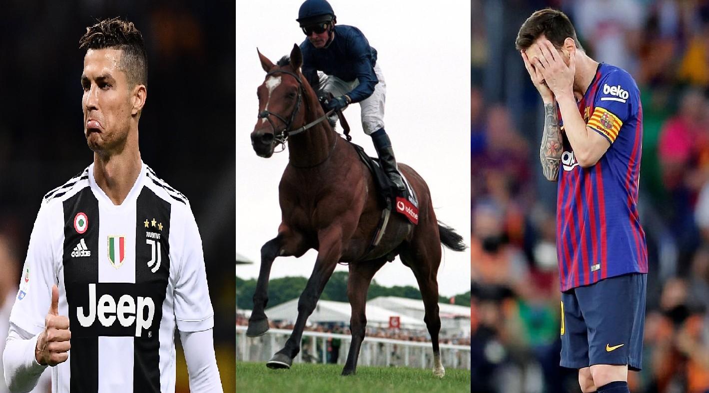 Con ngựa kiếm được nhiều tiền gấp 20 lần Messi và Ronaldo năm 2020